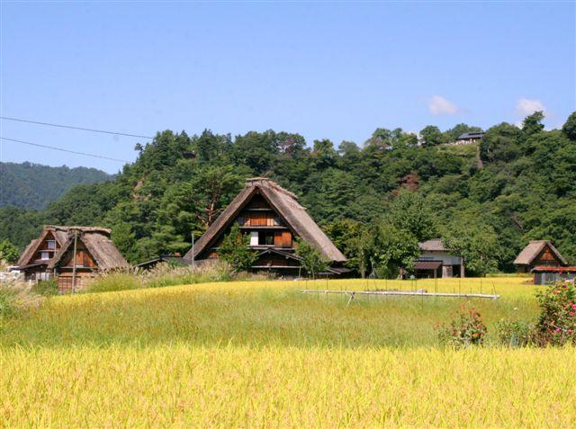shirakawagou21