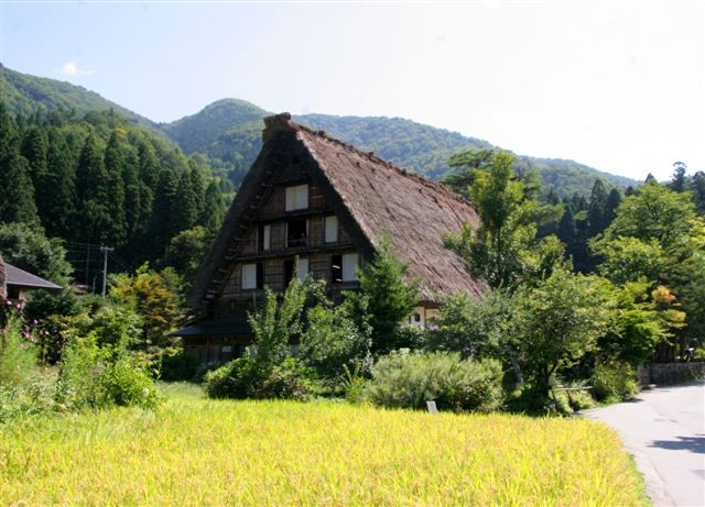 shirakawagou32