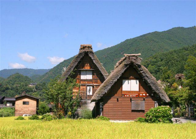shirakawagou37