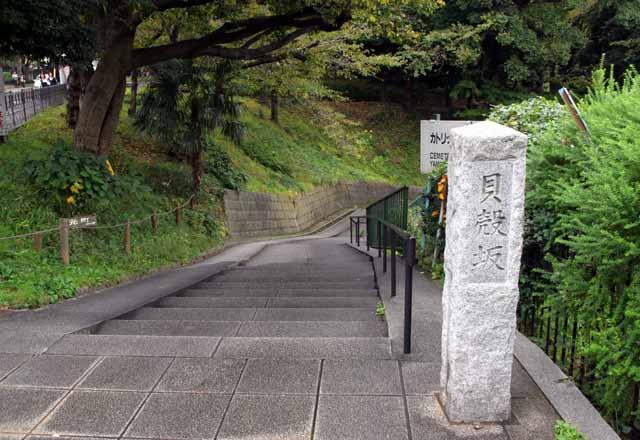 yokohamauouku41