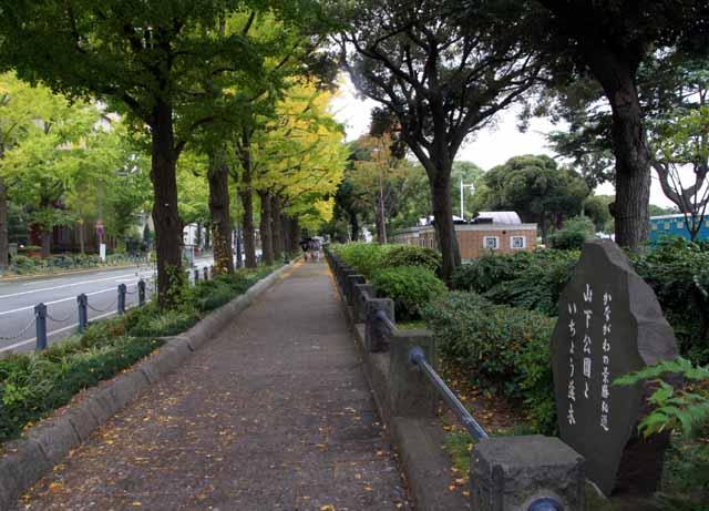 yokohamauouku68