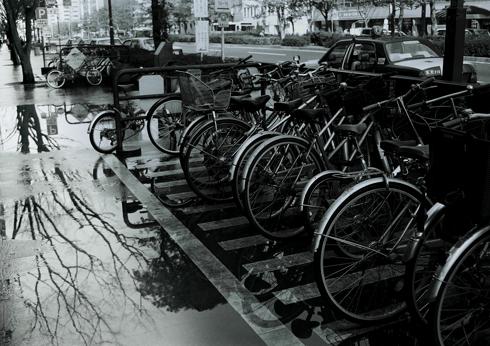 モノクロ写真08.03.14