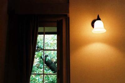 窓壁ハーフ