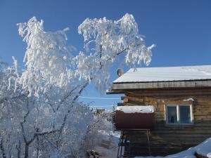 樹氷!!!