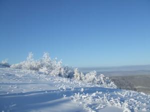 昔はスキー場でした