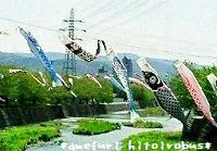 鯉のぼり 1