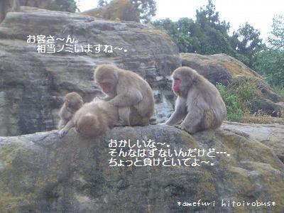 「お猿のノミ屋」