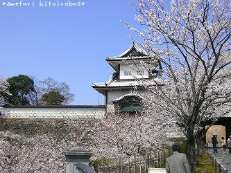 070412 石川門と桜1