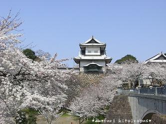 070412 石川門と桜2