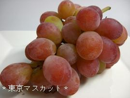 20070823東京マスカット