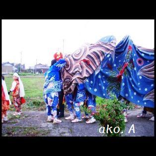 20071112昼獅子