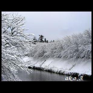 20080121 雪小杉