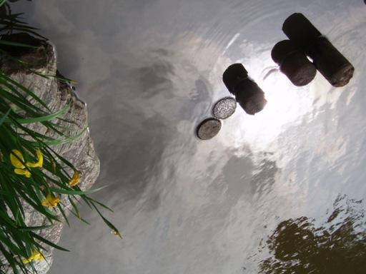 あなたは水の中にナニが見えますか・・・・