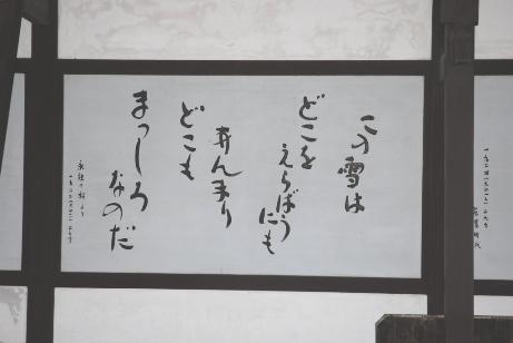 20070207225615.jpg