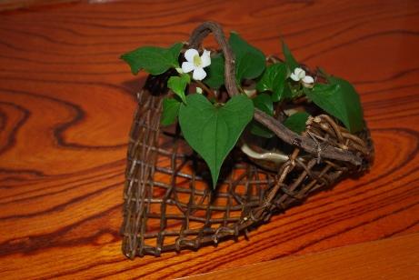 あけびの蔓の籠