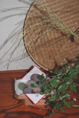 お庭のススキとハギと水引を生けました。