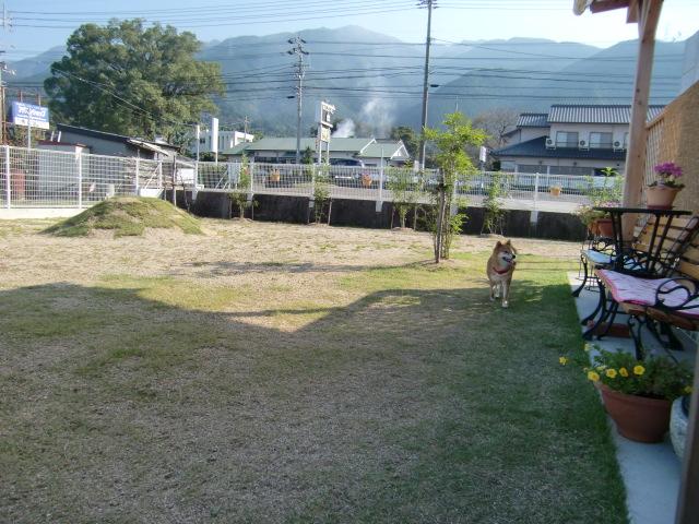 sansaku1027.jpg
