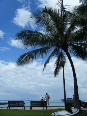 kapiolani beachpark