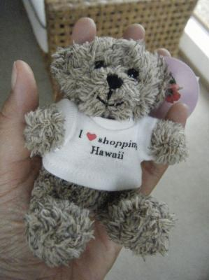 i love hawaii bear2