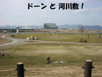 20080311_河川敷2