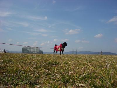 20080311_河川敷B
