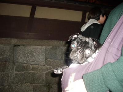 20080315_京都2