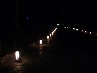 20080315_京都3