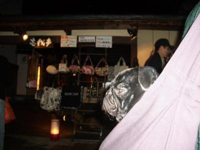 20080315_京都A