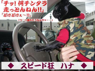 20080315_京都B