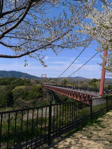 フルーツパークの橋