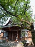 一加番神社 03