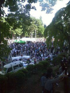 2011ishigaki2.jpg