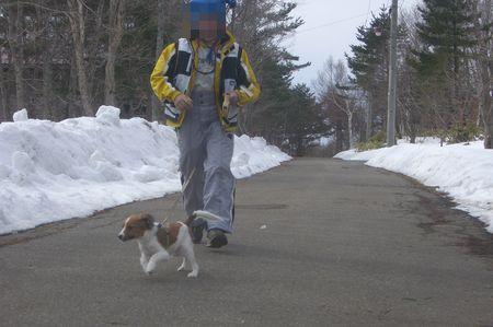 スキー70308