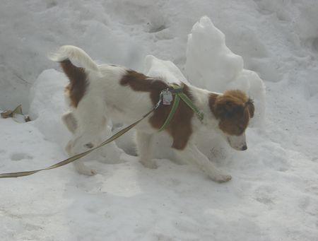 スキー90308
