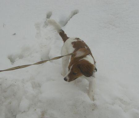 雪0320