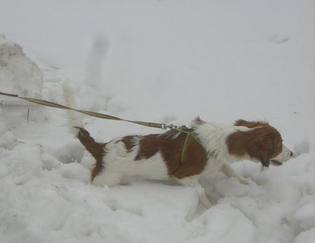雪03202