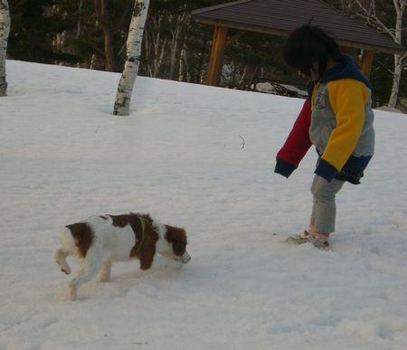 雪03212