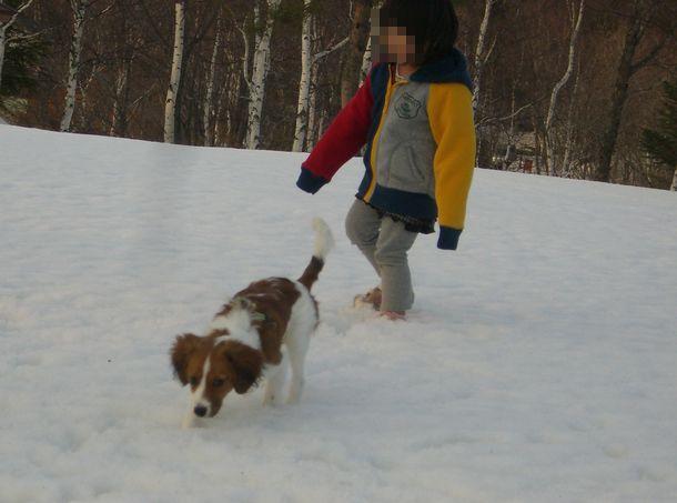 雪03213