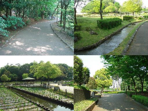 清水公園ABCD