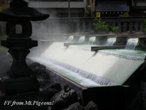 IMGP0602.jpg