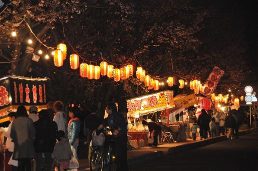 夜桜090403 096