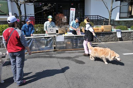 090410 059 狂犬病予防