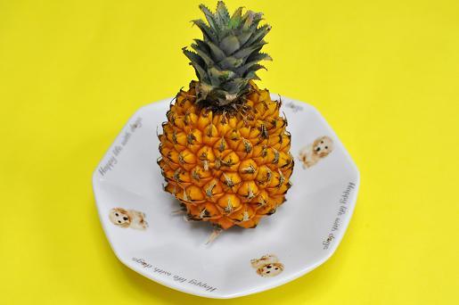 パイナップル090618 015