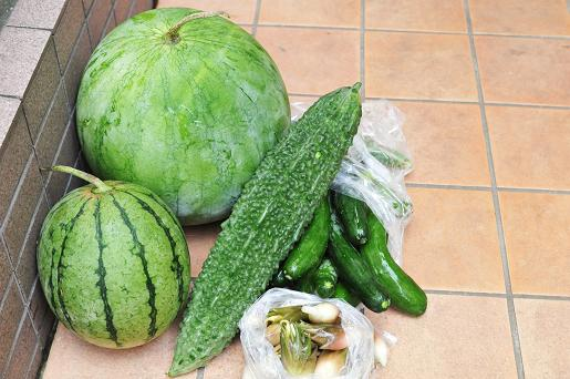 090813 008 夏野菜