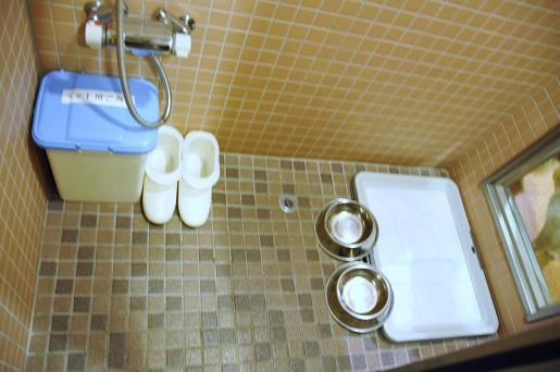 091108 191 ペット用洗い場