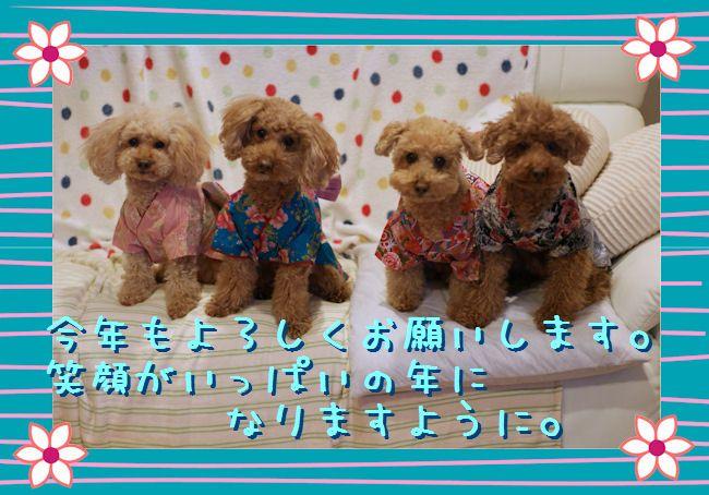 DSC00733-aisatu.jpg