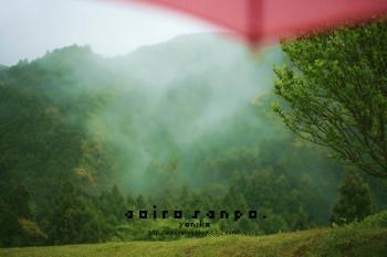 丸山千枚田からみた山にかかる霧