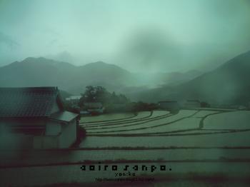 雨の中で 田植えの時期 VQ5010