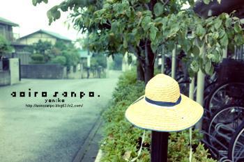 麦わらの帽子