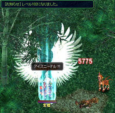 cho_102.jpg
